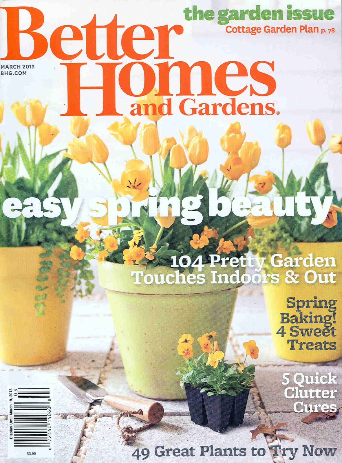 Caitlin wilson March better homes and gardens